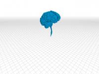 cerebro-infantil-png